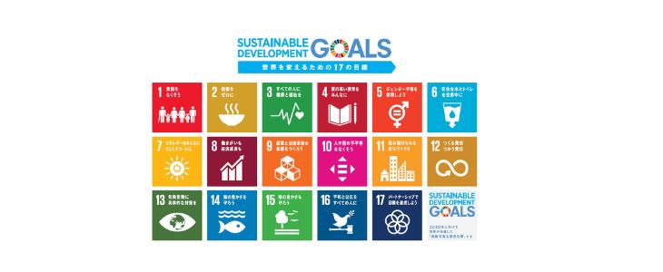 SDGs 17のゴール